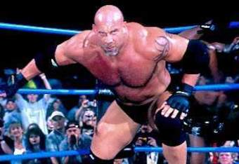 Goldberg32_crop_340x234