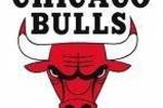 Bulls-logo_crop_150x100