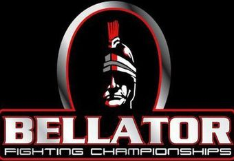 Bellator-fighting3_crop_340x234