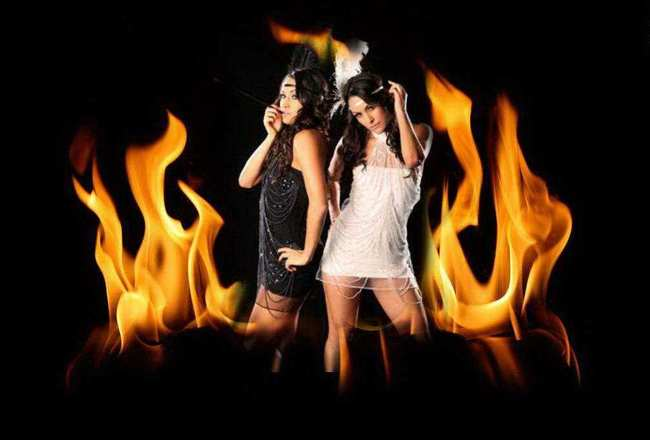 Wwe-divas-bella-twins-wallpapers-burning-hot-collection_crop_650x440
