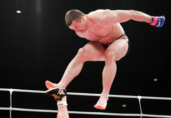 Crocop1_crop_340x234