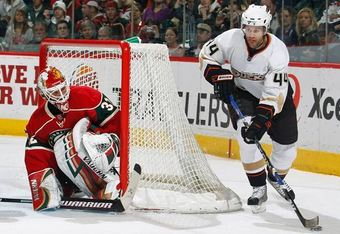 Niedermayer_big_011709_crop_340x234