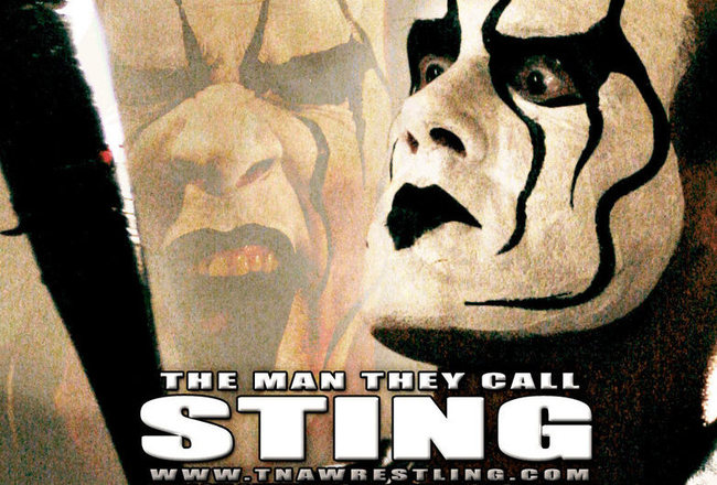Sting_crop_650x440
