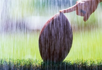 Rainyfootball_crop_340x234