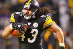 Troy-polamalu_crop_150x100