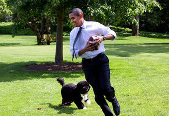 Obama-and-dog-bo-playing-football_medium_crop_340x234