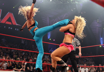 Knockouts_crop_340x234