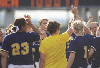 Michigansoftball_crop_340x234