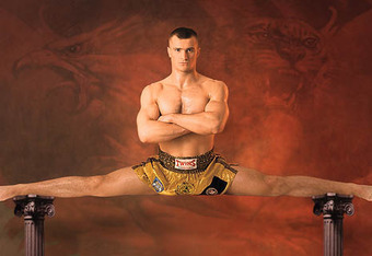 Mirko-cro-cop_crop_340x234