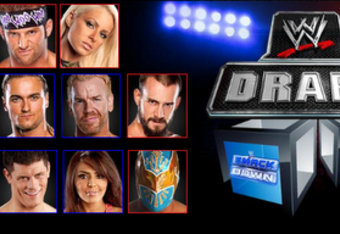 Wwe2011draft_display_crop_340x234