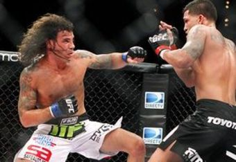 Guidapettis1_crop_340x234