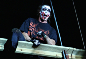 Sting-joker-300x254_crop_340x234