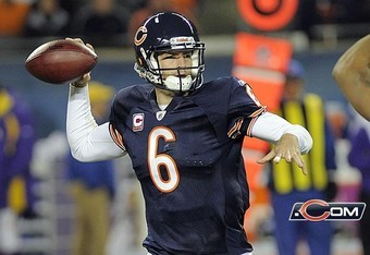 Cutler_crop_340x234