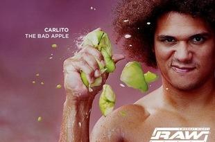 Carlito1024x768_crop_310x205