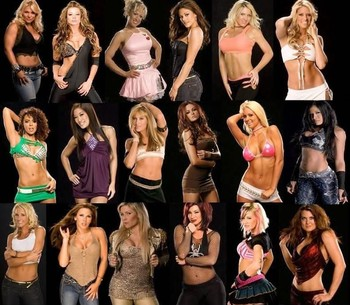 73738-best_wwe_diva_display_image