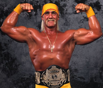 Hulkhoganwordheavyweightchampion_display_image