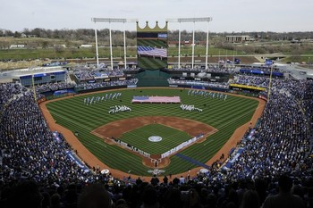 Kauffman_display_image