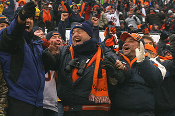 Bearsfans_display_image