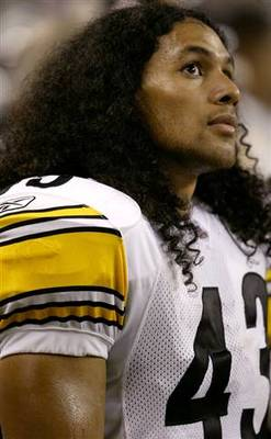 Troypolamalu_display_image