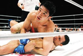 Renzogracie_display_image