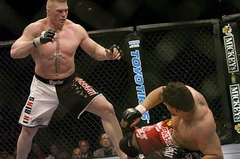 Mirlesnar1205_display_image