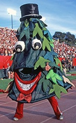 Stanfordmascot_display_image