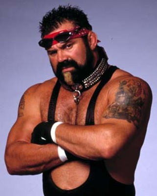 Ricksteiner_display_image
