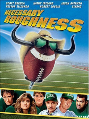 Necessaryroughness_display_image
