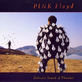 Pinkfloyddelicatesoundofthunder1988_display_image