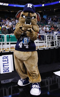 Butlerbulldog_display_image