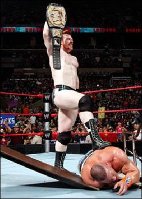 Sheamus_280x390_948131a_display_image