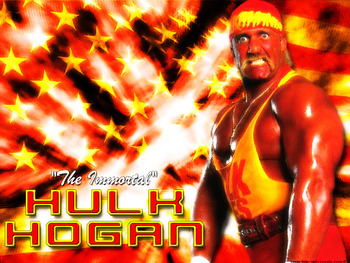 Hulk_hogan_1_display_image