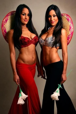 Bellatwins_display_image