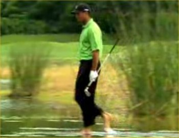 Tiger-woods-walking-on-water_display_image
