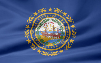 New-hampshire-flag_display_image