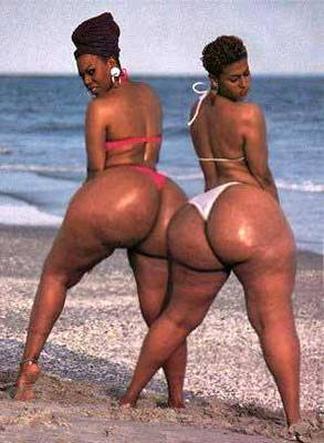 Bigbutts_display_image