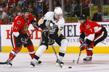Malkin_display_image