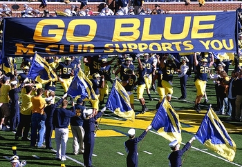 Gobluebanner_display_image
