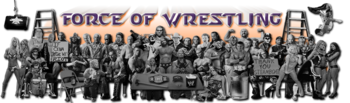 Forceofwrestlingbanner11_display_image