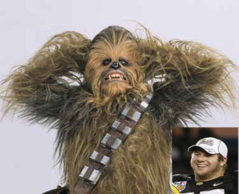 Chewbacca-reiff_display_image