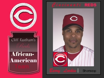 Redsafricanamericanlarkin_display_image