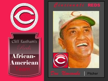 Redsafricanamericannewcombe_display_image