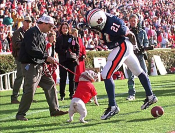 Ugaattackingauburn_display_image