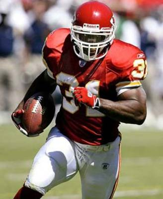 Priestholmes_display_image