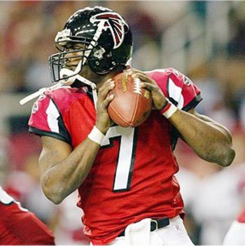 Michael_vick_display_image