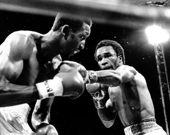 Hearns-leonard_display_image