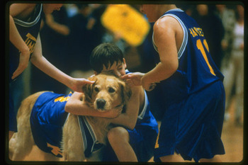 Airbud2_display_image