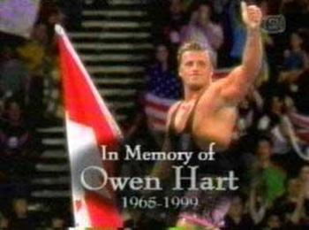 Owen_hart_display_image