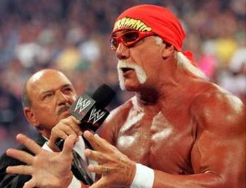 Wrestling_hogan_display_image