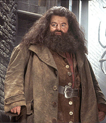 Hagrid_display_image